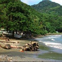 #4402 Strand auf Tobago