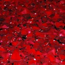 #0221 Schwimmende Rosenblätter
