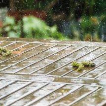 #0036 Regen im Mai