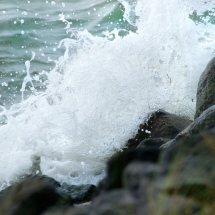 #2825 Meerwasser