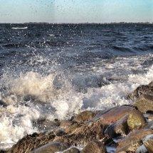 #2834 Wildes Meer