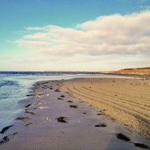 #2836 Muster im Sand