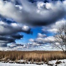 #2852 Winterzeit an der Ostsee